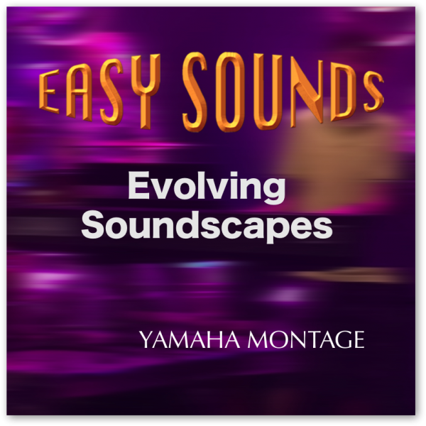 MONTAGE 'Evolving Soundscapes' (Download)