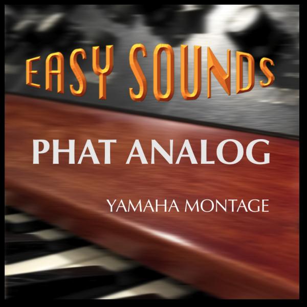 MONTAGE 'Phat Analog' (Download)